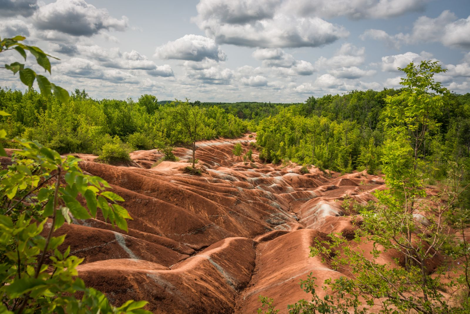 Cheltenham Badlands Trail Ontario Trails Council