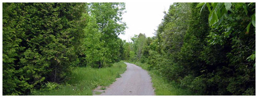 Lakefield Rotary Greenway Trail Ontario Trails Council