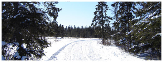 Cochrane Snowmobile Club Trail | Ontario Trails Council