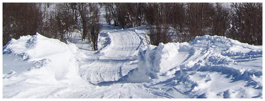 Parry Sound Snowmobile District Trail | Ontario Trails Council