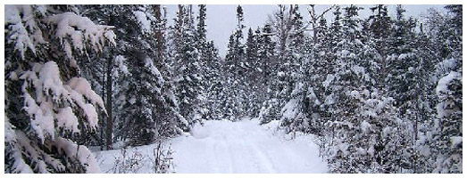 Timmins Snowmobile Club Trail | Ontario Trails Council